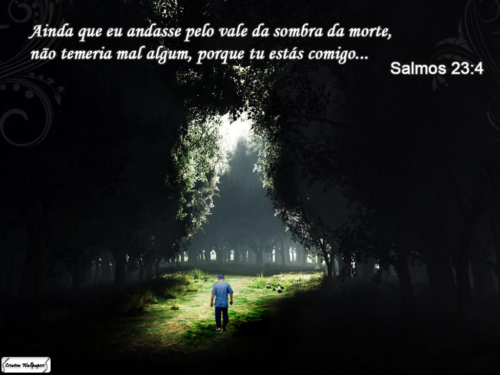 Ainda Que Eu Andasse Pelo Vale Da Sombra Da Morte Não Temerei Mal Algum: DICAS DO ZE: Salmo 23